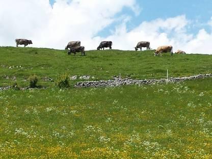 Jura Mountain Hike