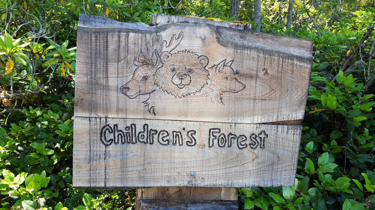 The Children's Forest in Silverdale